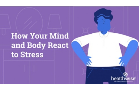 How Your Mind and Body React to Stress